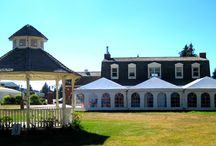 Wedding Venues / We have multiple venues of various size to suit all of your wedding needs... to book call 403.527.1234 or mhstampede.com