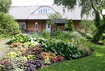 puutarhat