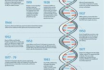 dna gene human theory