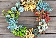 DIY Garden Ideas / by Maria Del Pinto