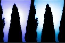 - Licht - / effet(s) de lumière - image  -