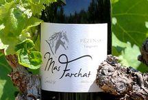 Nos cuvées Genèse et Mas Farchat / La cuvée Genèse 2011 est la première mise en bouteille du Mas Farchat, jeune domaine situé à Gabian (34320). Le Mas Farchat est une cuvée 2013.