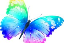 Butterflies / Beautiful pictures with butterflies