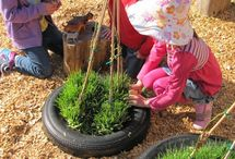 School gardens / Tire gardens