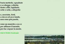 CONTRADE DEL SUD / Luoghi, volti, parole, eventi, epifanie dell'Italia del Sud.