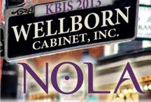 The Best of KBIS 2013