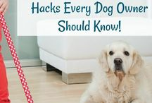 Pet Tips / Pet tips to help keep your cat and dog healthy and happy. Simple DIY and life hacks for your furry friends.