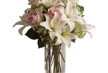 Flowers / A beautiful bouquet of pink roses, Asiatic lilies and Queen Anne's lace