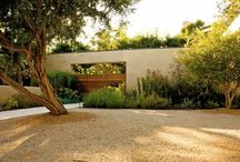 Elizabeths garden