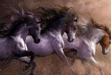 Horses / by Leah Anderson