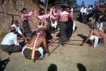 http://www.komodoecotours.com/flores/caci-dance-komodo---rinca-tours-3d-2n