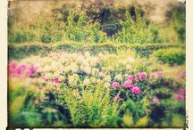 Haven i Gudme
