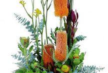 Banksia beauty / Inspiration for diy banksia flower arrangements