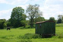 Adaliza loves tin buildings & huts