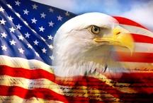 American Pin-spirations