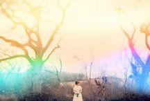 Wedding Web / by Georgia Hogan