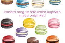 Macaron képek / ötletek / Tudj meg mindent macaronjainkról. https://divascake.hu/macaronokrol-informacio/