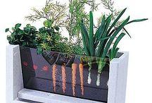 balkon i ogródek