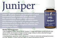Young Living Juniper Essential Oils