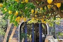 VKATI CSAK OLASZORSZÁG / Gyönyörű helyek Olaszország