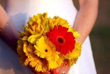 Wedding Flowers / Flowers for my Big Day