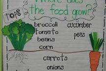 Growing Food at School
