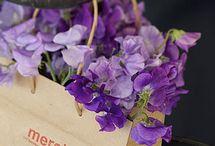 Lovely Lilac Lavender Wedding Ideas
