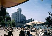 Summer in Vienna / There's so much to discover in the cosmopolitan city of Vienna, especially in summer. Many of the most beautiful sightseeings in the City of Music are easily reachable from the famous Hotel Capri in Vienna - http://www.hotelcapri.at. Vienna has so much more to offer - discover the Austrian Capital! / by Das Capri Ihr Wiener Hotel