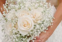 Wedding allgemeines