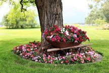 Garden & accesories / Çeşitli bahçe aksesuarları ve bahçe düzenlemesi