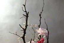 flower arrangement: ikebana