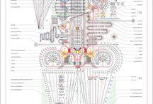 Infographics/Data Viz