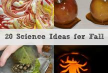Science Experiments for Fall / Fun science experiments for Autumn and Fall / by ScienceSparks