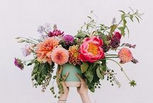 Photographing florals