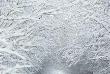 Snowy tunel
