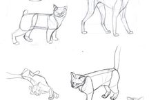 Rysunek-zwierzęta