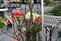 Kukka-asetelmia, Flower Arrangements / Kukka-asetelmia juhliin ja silmäniloksi