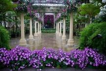 romantic gardens / by Arlene Curry