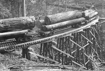 old sawmilling