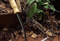 Yard ~ Tools