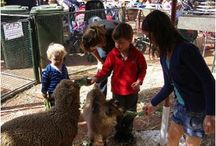 Fun for Kids in Melbourne