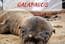 Perù & Galápagos