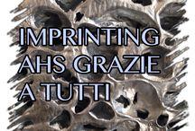 IMPRINTING AHS di maurizio contato / milano seminario la CREATIVTA
