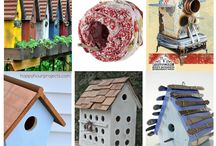 birdhouses / by Pat Guidry
