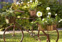 풀, 나무 그리고 꽃