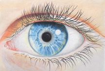 Cindy Wider coloured pencil drawings