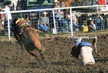 Bronc riding wrecks. Ouch. / Wrecks from bareback bronc riding, saddle bronc riding, and ranch bronc riding.