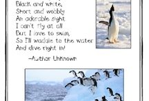 penguins/arctic animals theme / by Nikki Schramm
