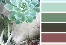 Colour combinations Home Decor Wall Colour