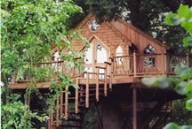 Amazing Houses and Tree Houses